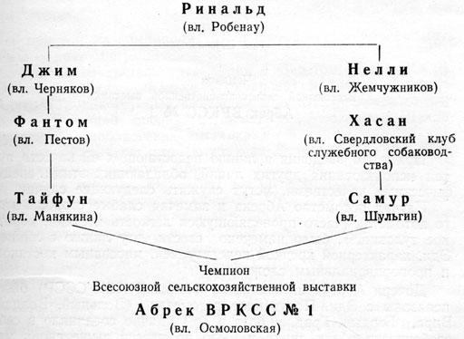 Победитель Свердловских выставок 1949-1950 гг