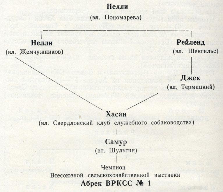 Победительница на Свердловских выставках 1949 и 1950 гг