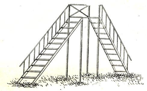 Рис. 4. Лестница двусторонняя
