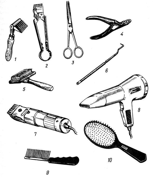 Рис. 18. Инструменты для ухода за шерстью, когтями и зубами пуделя:1 ; - резак для колтунов; 2 - механическая машинка для стрижки 'Лилипут'; 3 - парикмахерские ножницы; 4 - кусачки для укорачивания когтей; 5 - щетка-'пуходерка'; 6 - скребок для снятия зубного камня; 7 - электрическая машинка для стрижки; 8 - фен с регулятором температуры воздуха; 9 - металлическая расческа с редкими круглыми зубьями; 10 - упругая металлическая щетка