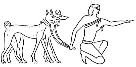 Происхождение домашней собаки и классификация пород - Страница 2 000002