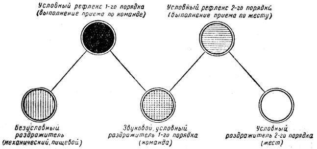 Схема отработки условных