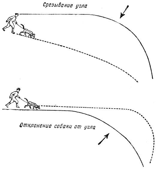 Методы дрессировки собак формы и приемы