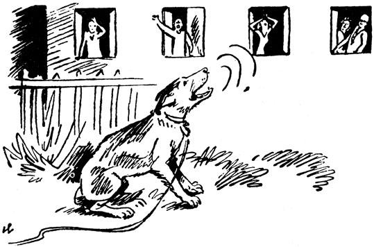 Собака в квартире лает соседи жалуются